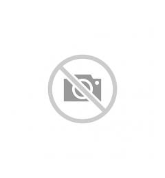 Cev FASER PPR-CT tankozidna 50 x 5,6